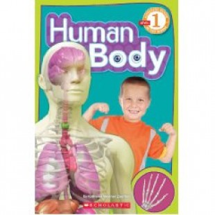 HUMAN BODY ,READER LEVEL 1